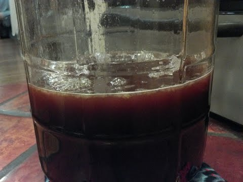 hibiscus mead in carboy