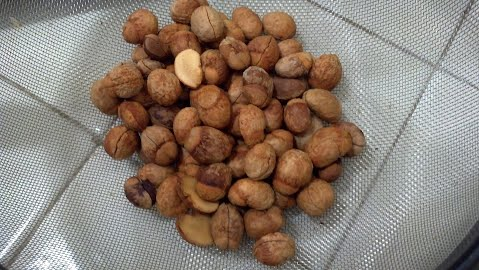 loquat seeds with skins removed