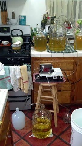 filtering apfelwein